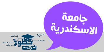 التاكد من استكمال الملفات لطلبة جامعة الاسكندرية
